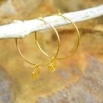 """Sis & Suzy oorbellen 010 - € 6,50<a href=""""/product/sis-suzy-oorbellen-010/"""" target=""""_blank"""">BESTELLEN</a><br>Goudkleurige ronde oorbellen met goudkleurig hangertje, doorsnede 6 mm."""